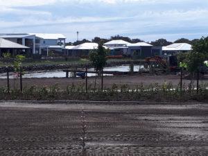 7.8.18 Harbourside Park viewing platform